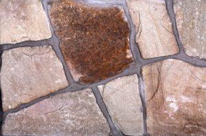 Mesa Creek Field   Surrey Stone Supplier   Pacific Art Stone